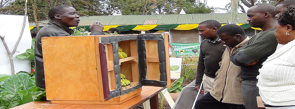 A banana ripening chamber fabricated by KALRO-Thika  and adopted by Katumani for dissemination to farmers