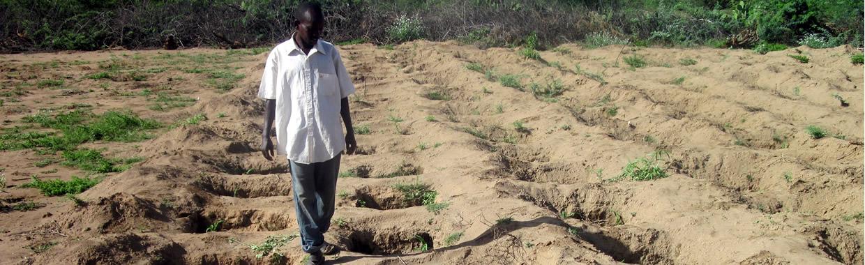 Farming in Arid and Semi-Arid Areas